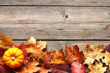 Autumn leaves and pumpkin
