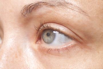 Macro image of woman human eye