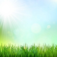 Green grass background with sunshine