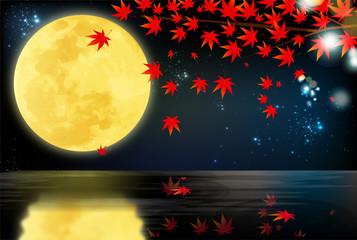 水辺で見る紅葉と月