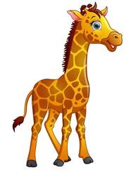 Happy giraffe cartoon isolated on white background