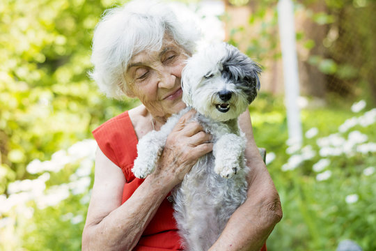beautiful senior woman with her dog in a blooming summer garden