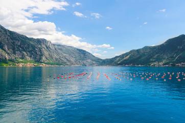 Fish farm between mountains in Kotor Bay, Montenegro. Sea industry in water.