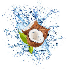 Coconuts in water splash on white background