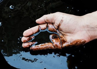 crude oil in hand due to crude oil leak.crude oil spill concept.