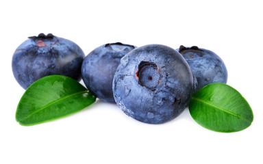 Blueberries on white closeup