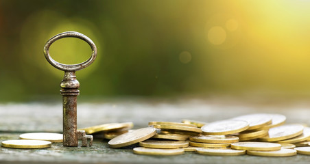 Key and money coins - business success concept banner