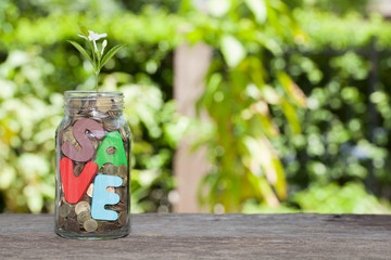 save money for investment concept money in jar and plant, Busine