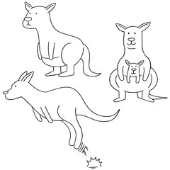 vector set of kangaroo