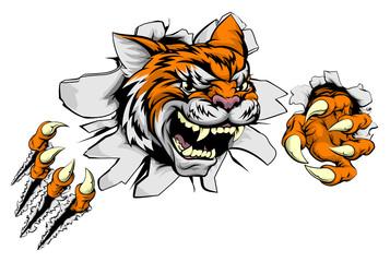 Tiger sports mascot ripping through wall