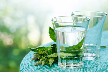 Glass of water and mint
