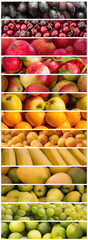 fruits - colorful fruit mix - food collage
