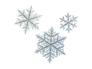 3 snowflakes, isolated on white background. This set created from three macro photos of real snow crystals (large fernlike dendrites).