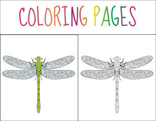 Coloring book page. Dragonfly. Sketch and color version. Coloring for kids. Vector illustration