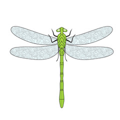 Dragonfly doodle hand drawing style. Vector illustration