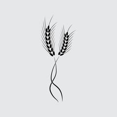 wheat ears symbol vector