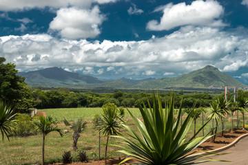 Casela Park landscape Mauritius