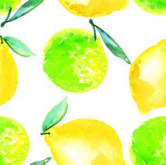 Watercolour lime and lemon fruit illustration. citrus natural ha