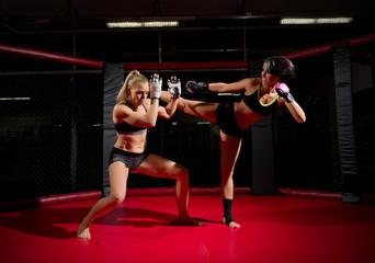 Two wrestler women