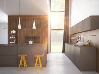 modern kitchen in a house or apartment. 3d rendering