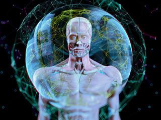 Augmented reality. Human anatomy. 3D illustration.