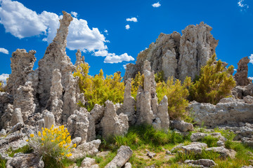Rock formations, Tufa Natural Reserve, California, United States of America