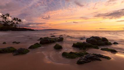 Low tide, Maui, Hawaii, United States of America