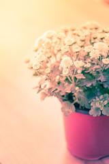 Flowers pot vintage