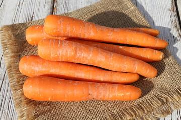 carottes 06082016