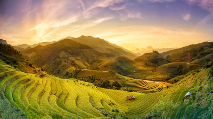 Foto auf AluDibond Reisfelder Terraced rice fields at sunset Mu Chang Chai, Yen Bai, Vietnam