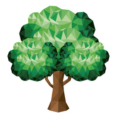 tree low poly isolated icon design, vector illustration  graphic