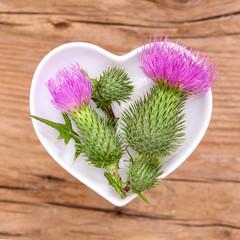 Homöopathie und Kochen mit Heilkräutern, Distel