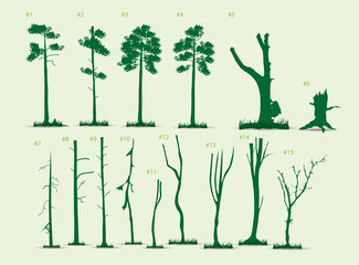 Pine tree vector pack