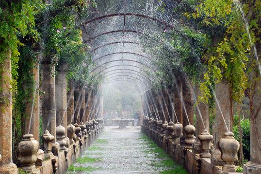 Pergola of the Alfabia gardens, Mallorca