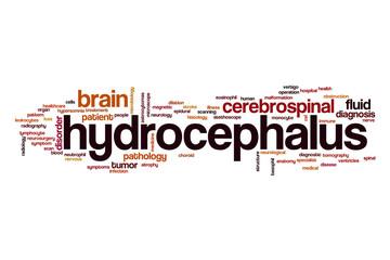 Hydrocephalus word cloud concept