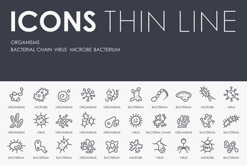 Organisms Thin Line Icons