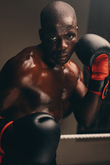 Portrait of young boxer with gloves up
