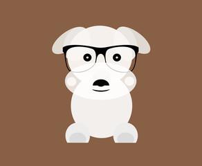 The cute dog