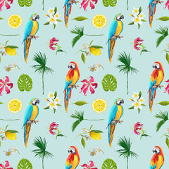 Ingelijste posters Papegaai Tropical Background. Toucan Bird. Cactus Background. Tropical Flowers