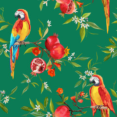 Canvas Prints Parrot Tropical Flowers, Pomegranates and Parrot Birds Background