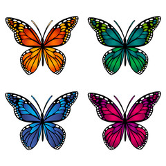 A set of colored butterflies. Isolated objects. Vector Image.
