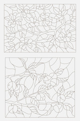 Set contour illustrations, blooming Apple tree branch and the branch with fruit