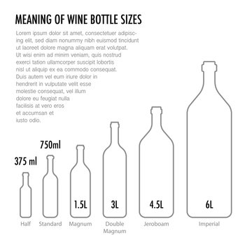 Meaning of wine bottle size. Typography poster in a modern flat style for wine tasting, information poster for wineries or wine shop