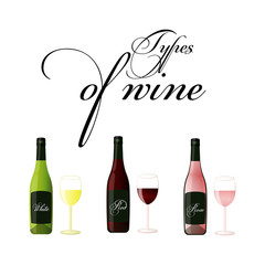 Bottles of wine - red, white and rose - vector drawing isolated