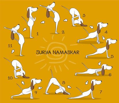 Cartoon positive dog doing yoga position of Surya Namaskara. San Salutation. Happy animal. Vector illustration
