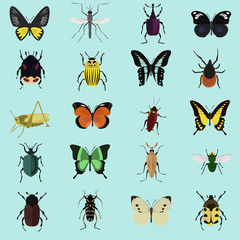 Set of twenty color flat insects icons
