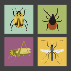 Set of four color flat insects icons
