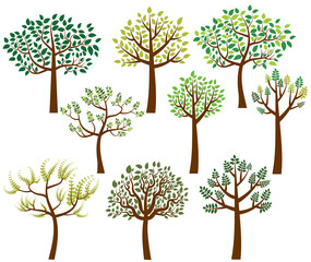 Vector collection of stylized tree silhouettes with green leaves