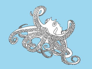 Black and white octopus, Hand drawn vector illustration.