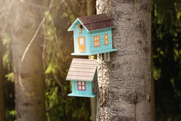Cute birdhouses and old rustic wooden